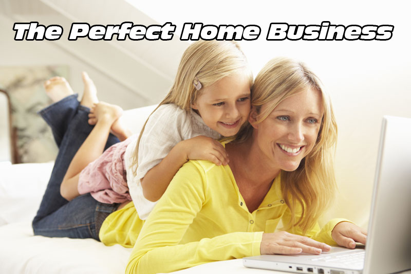 The Perfect Home Business